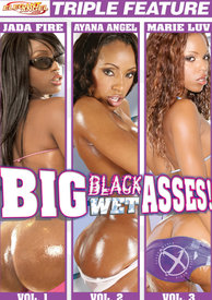 Big Black Wet Asses Vol 1-3 {3 Disc}